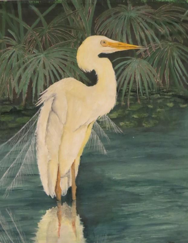 Heron-Male